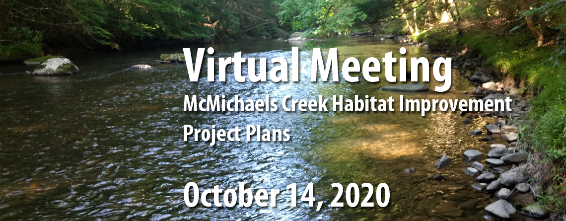 Register Now for Brodhead Chapter Trout Unlimited Virtual Meeting on McMichaels Creek Habitat Improvement Project