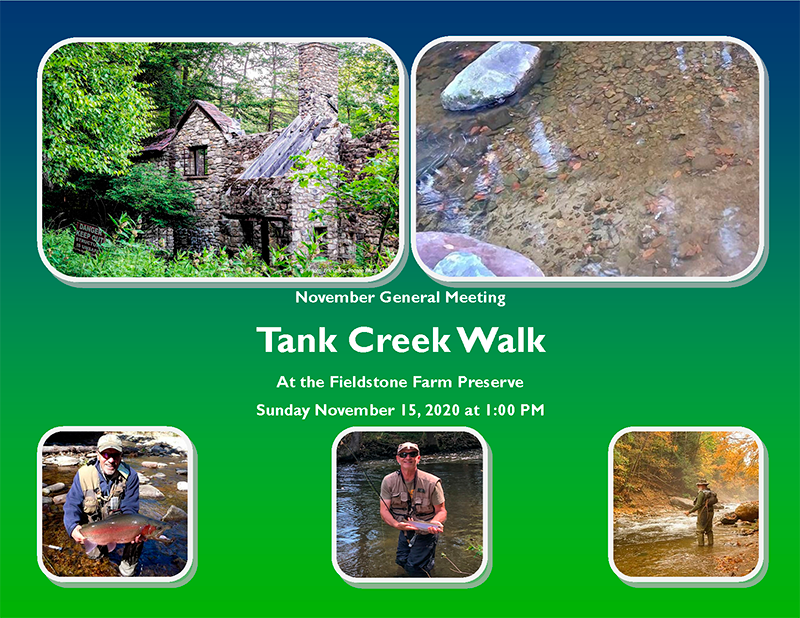Tank Creek Walk Flyer